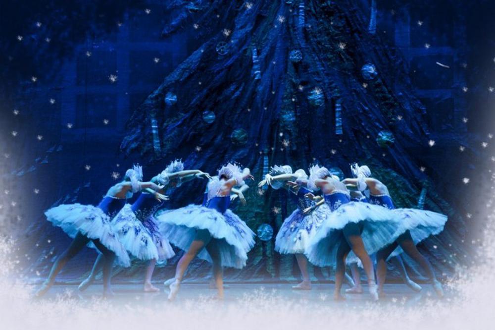 Lezioni dimostrative e Rinfresco di Natale